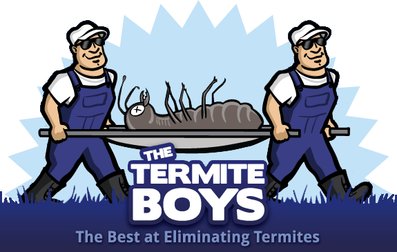 Pretty Termites Cause The Most Damage | The Termite Boys