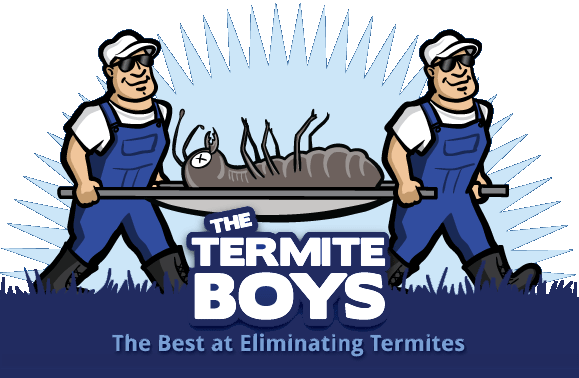 Spotting Termites In Your Home | The Termite Boys