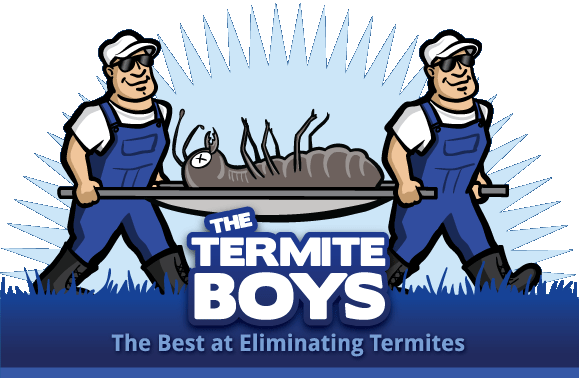 Experts Claim That Termites Are Active Within One In 36 Boston Area Homes, But The Situation Is Worse On The State's Coast